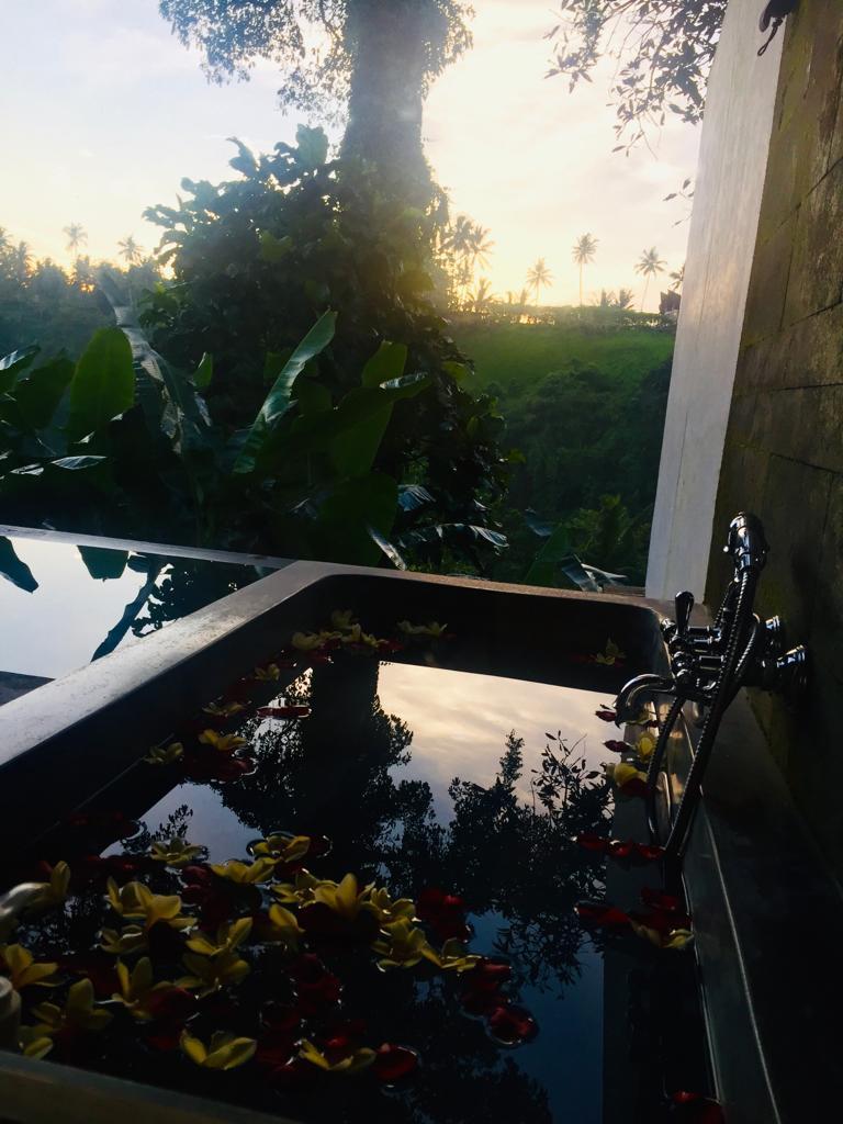 foto de viajes a Bali naturaleza